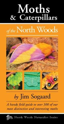 Moths & Caterpillars of the North Woods