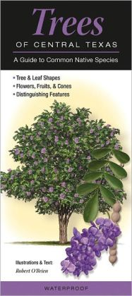 Trees of Central Texas: A Guide to Common Native Species