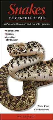 Snakes of Central Texas: A Guide to Common and Notable Species