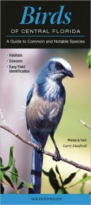 Birds of Central Florida: A Guide to Common and Notable Species