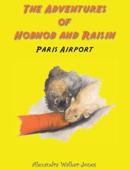 The Adventures of Hobnob and Raisin - Paris Airport
