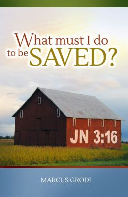 What Must I do to be Saved? Book