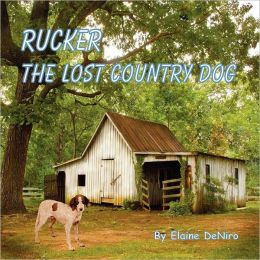 Rucker, The Lost Country Dog