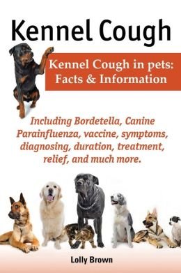 Can My Dog Get Kennel Cough From The Vaccine