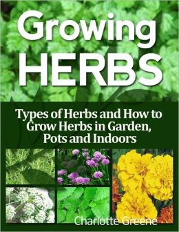 Growing Herbs: Types of Herbs and How to Grow Herbs in Garden, Pots and Indoors