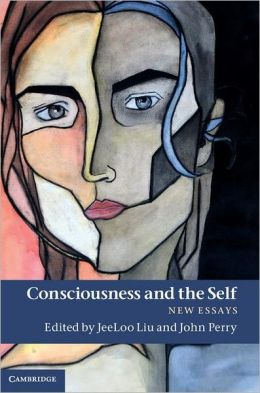 Consciousness and the Self: New Essays