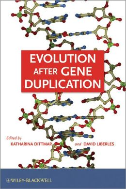 Evolution after Gene Duplication