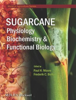 Sugarcane: Physiology, Biochemistry & Functional Biology