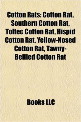 Cotton Rats: Cotton rat, Southern cotton rat, Toltec cotton rat, Hispid cotton rat, Yellow-Nosed Cotton Rat, Tawny-Bellied Cotton Rat