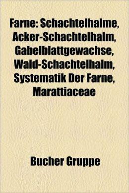 Farne: Schachtelhalme, Acker-Schachtelhalm, Gabelblattgew Chse, Wald-Schachtelhalm, Pseudosporochnales, Systematik Der Farne,