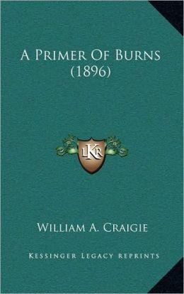 A Primer Of Burns (1896)