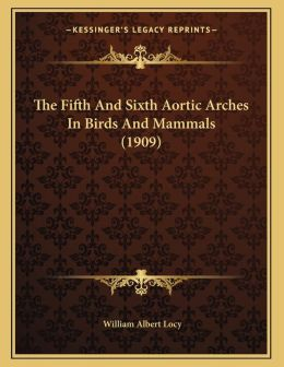 The Fifth And Sixth Aortic Arches In Birds And Mammals (1909)
