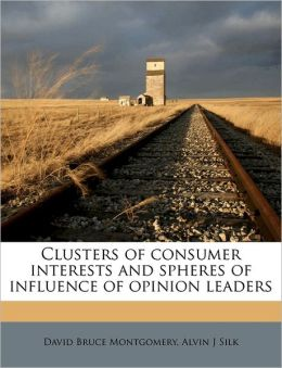 Clusters of consumer interests and spheres of influence of opinion leaders