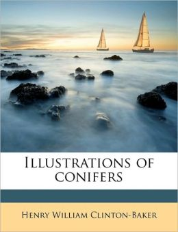 Illustrations of conifers Volume 3