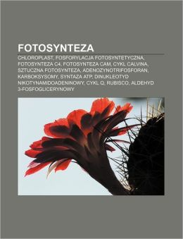 Fotosynteza: Chloroplast, Fosforylacja Fotosyntetyczna, Fotosynteza C4, Fotosynteza CAM, Cykl Calvina, Sztuczna Fotosynteza