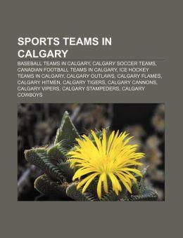 Sports teams in Calgary: Baseball teams in Calgary, Calgary soccer teams, Canadian football teams in Calgary, Ice hockey teams in Calgary Source: Wikipedia