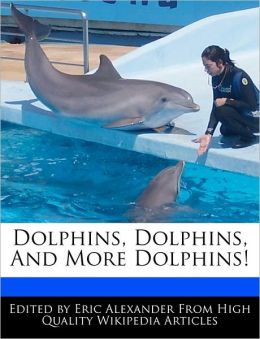Dolphins, Dolphins, And More Dolphins!