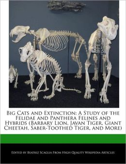 Big Cats And Extinction