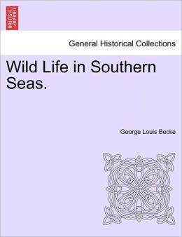 Wild Life In Southern Seas.