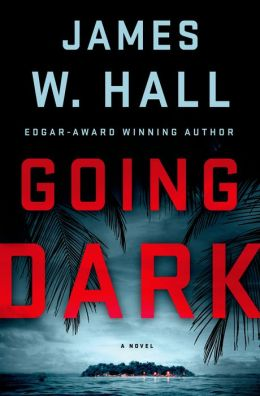 Going Dark (Thorn Series #13)