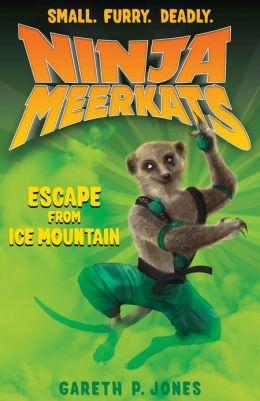 Ninja Meerkats (#3): Escape from Ice Mountain