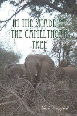In the Shade of the Camelthorn Tree
