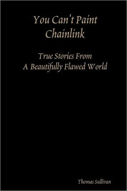 You Can't Paint Chainlink: true Stories from a Beautifully Flawed World