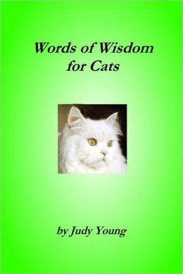 Words of Wisdom for Cats