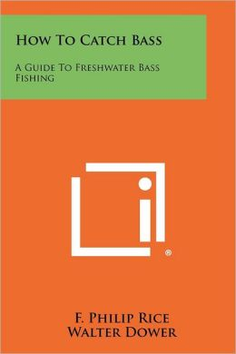 How To Catch Bass: A Guide To Freshwater Bass Fishing