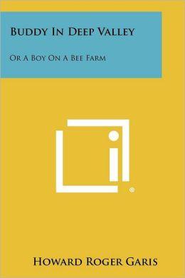 Buddy in Deep Valley: Or a Boy on a Bee Farm