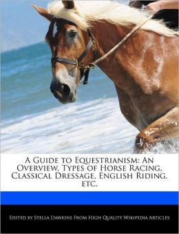 A Guide To Equestrianism