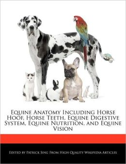 Equine Anatomy Including Horse Hoof, Horse Teeth, Equine Digestive System, Equine Nutrition, and Equine Vision