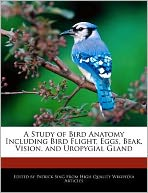A Study of Bird Anatomy Including Bird Flight, Eggs, Beak, Vision, and Uropygial Gland
