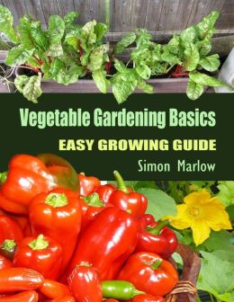 Vegetable Gardening Basics: Easy Growing Guide