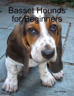 Basset Hounds for Beginners