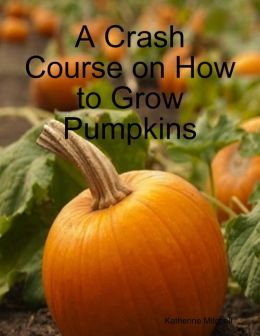 A Crash Course on How to Grow Pumpkins