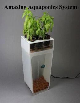 Amazing Aquaponics System