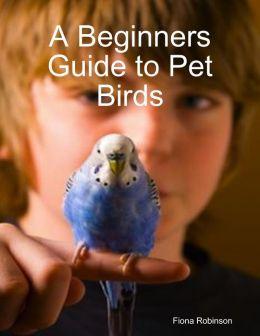 A Beginners Guide to Pet Birds