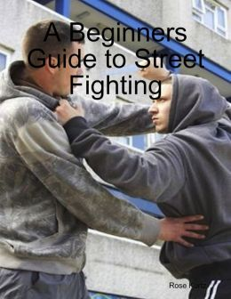 A Beginners Guide to Street Fighting