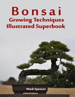 Bonsai Growing Techniques Illustrated Superbook