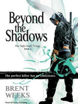 Beyond the Shadows (Night Angel Trilogy #3)