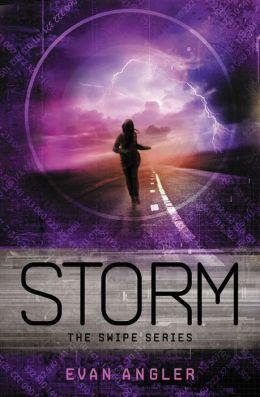 Storm (Swipe Series #3)