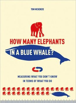 How Many Elephants in a Blue Whale?: Measuring What You Don't Know in Terms of What You Do