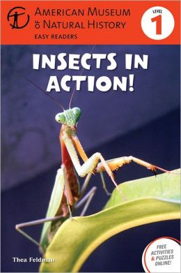 Insects in Action: (Level 1)