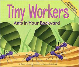 Tiny Workers: Ants in Your Backyard (Backyard Bugs Series)