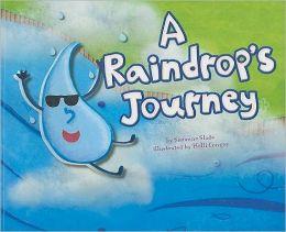 Raindrop's Journey, A
