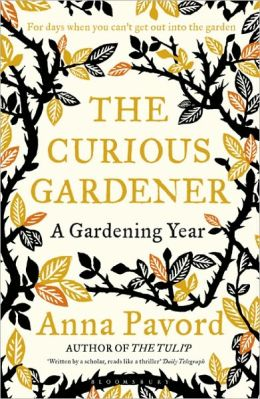 The Curious Gardener: A Gardening Year