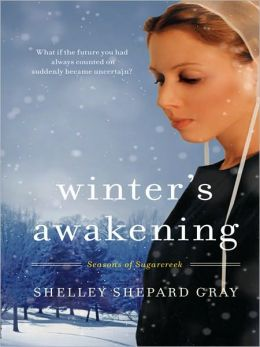Winter's Awakening (Seasons of Sugarcreek Series #1)