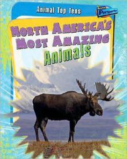 North America's Most Amazing Animals