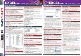 Microsoft Excel 2003 for Advanced Users (SparkCharts)